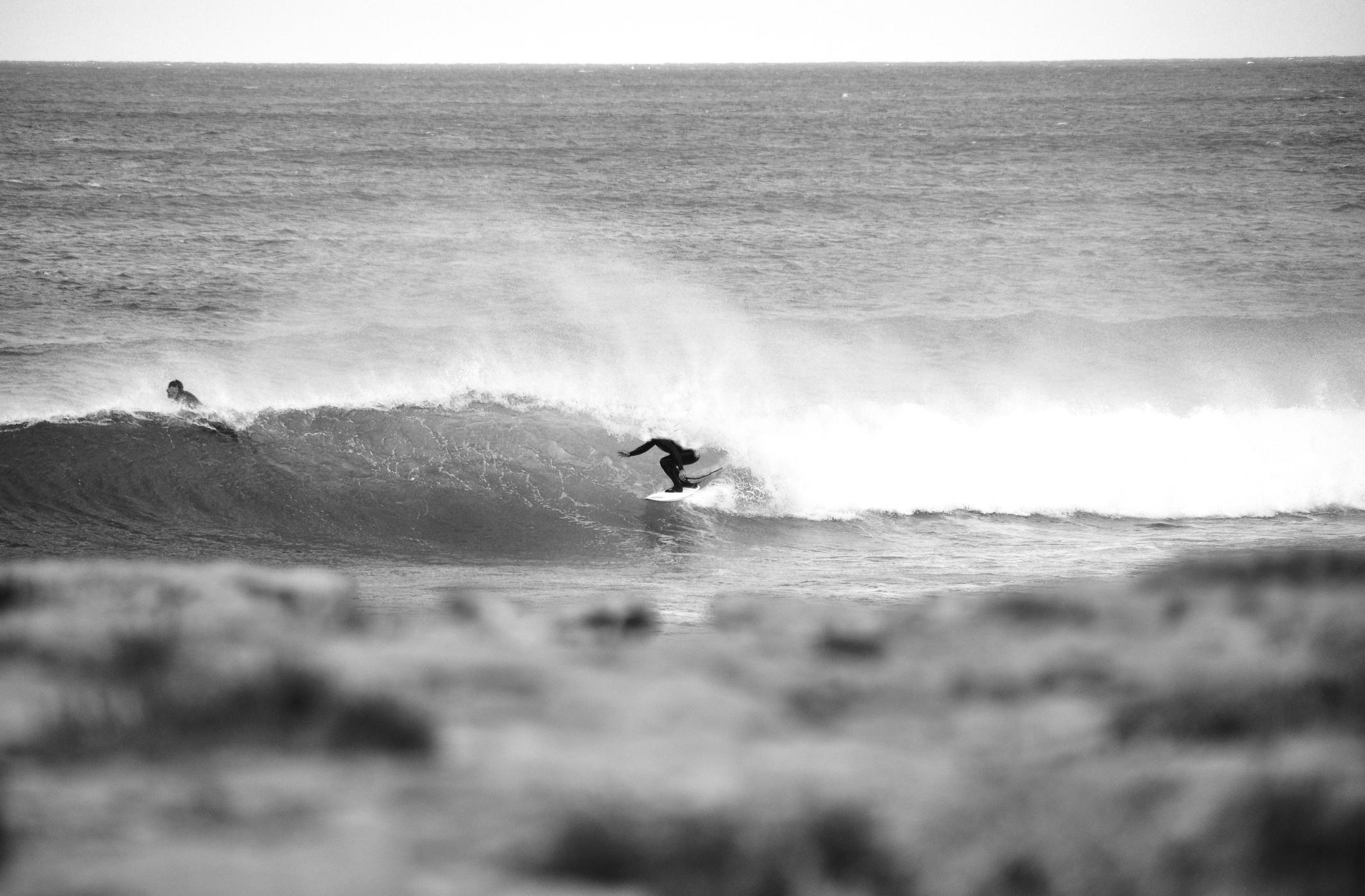 surfer_tube_cactus